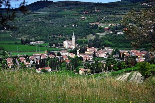 Mezzane di Sotto - Verona