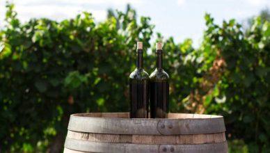 Cantine e ristoranti di Mezzane di Sotto - come comunicano le imprese vinicole e della ristorazione
