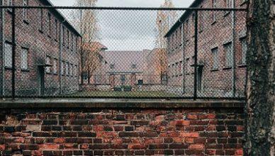 Giornata della Memoria - razzismo - campi di sterminio - Biblioteca Andrea Porta - Mezzane di Sotto - Verona